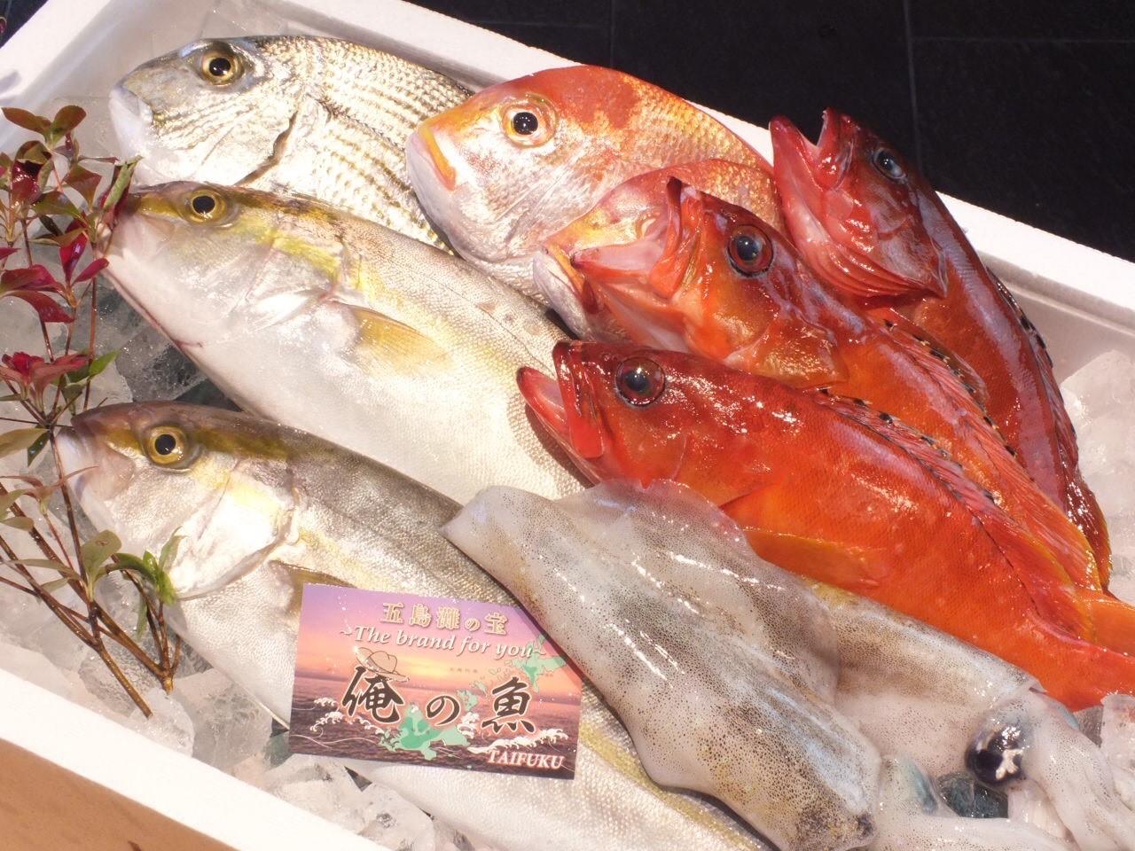 海鮮居酒屋 魚ツキ